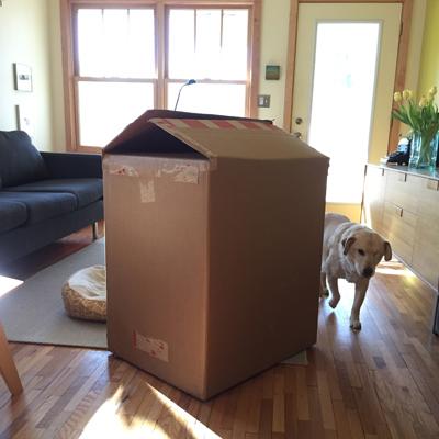the box + hannah